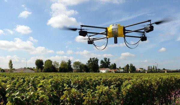 drones-mexico-5